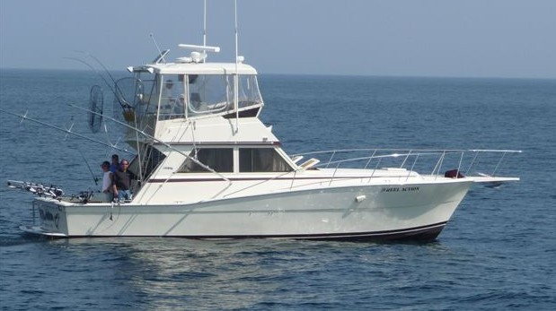Our fleet reel action sportfishing charters for Reel action fishing charters